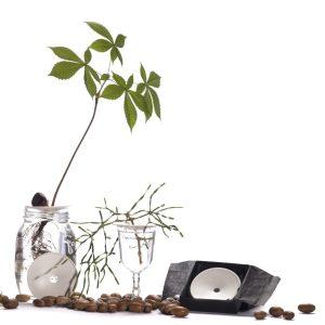 Plantenaccessoires