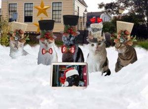 Kersverhaal