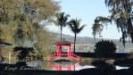 ハワイ島フォト日記 公園もクリスマス&お正月に向けて大掃除!