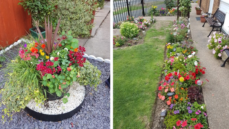 This year's Hull City Council Tenants' Garden Competition will be the biggest yet.