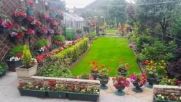 Terry Alsop garden