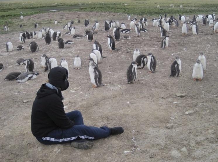 Falklands 3