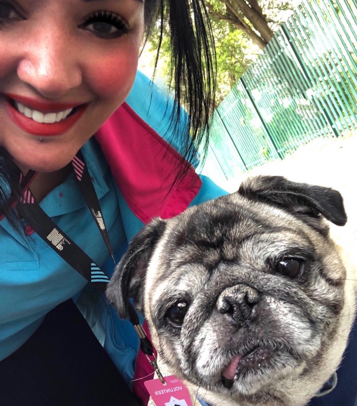 Volunteer Sita Douglas with Sandy the pug.