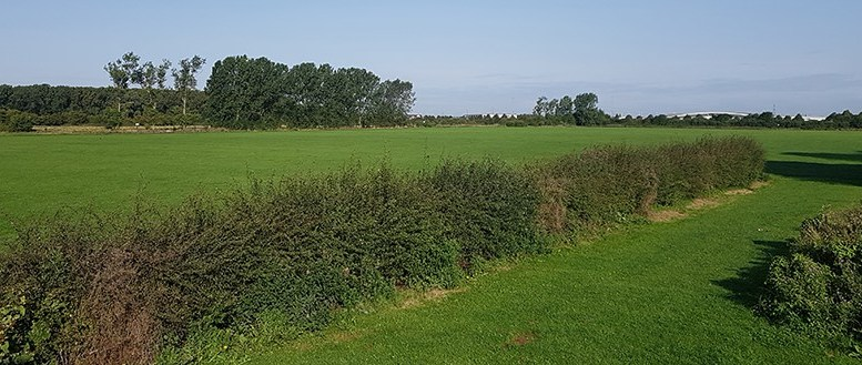 Bude Road playing fields, Hull