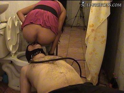 femdom toilet slave art