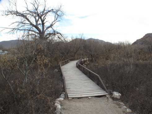Hueco Tanks Pedestrian Bridge