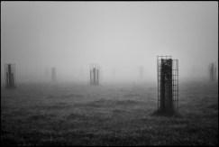 Sentinelles immobiles