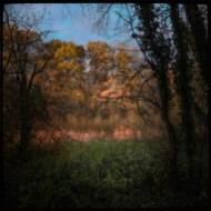 automne_04_011213