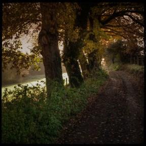 automne_11_011213