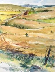 Causse Méjean. Route vers Meyrueis.
