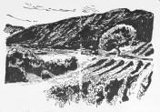 Vaucluse. Besoin. Vue sur les contreforts du Mt Ventoux.