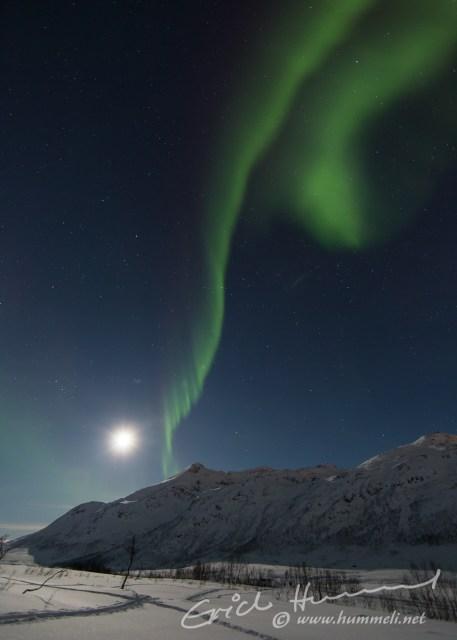 ...und zaubert zusammen mit dem Mond...