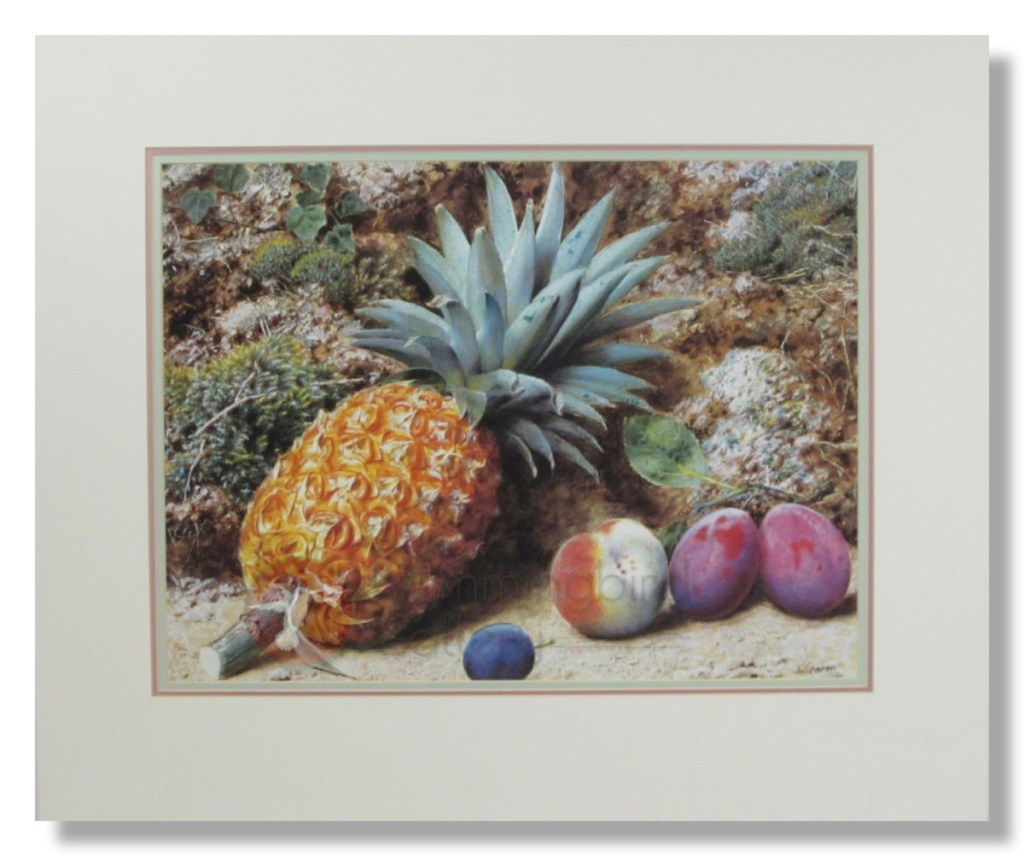 Hummingbird Gallery John-Sherrin-–-Still-Life-with-Fruit-and-Pineapple Matted Art