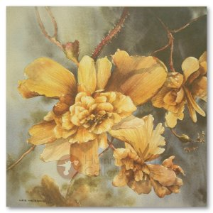 Hummingbird Gallery Les-Weisbrich-Trailing-Begonias-1-Image Les Weisbrich <p>Flower Series<p>Limited Editions Currently Available