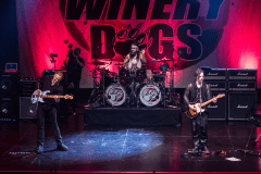 12 The Winery Dogs @ Teatro Cariola 2016