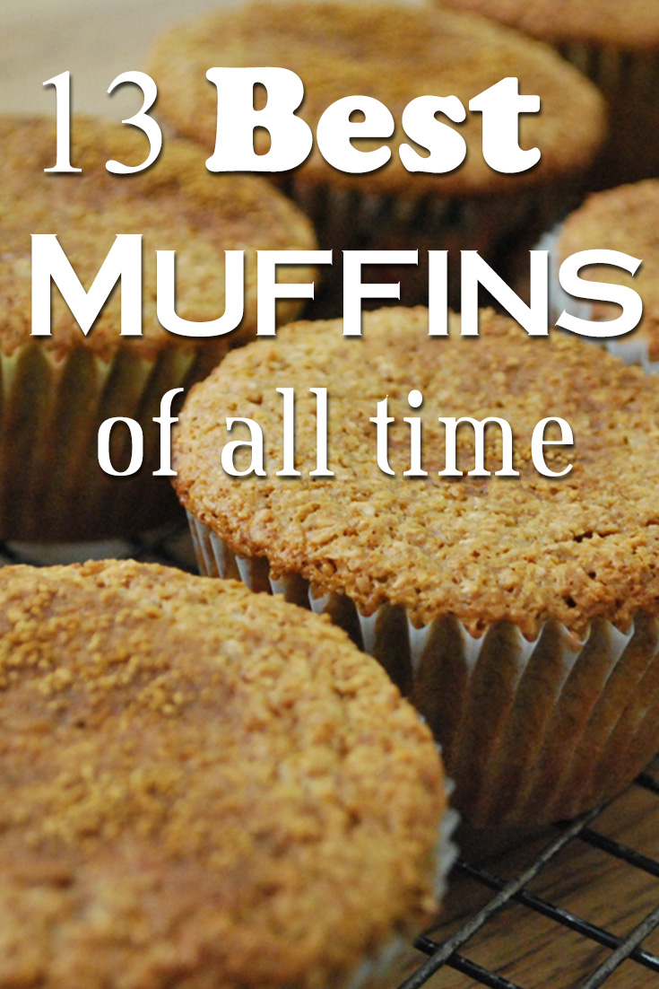 13 Best Muffins Recipes of All Time. I consider myself a muffin connoisseur, so I offer up my list of favorite muffins. You're welcome.