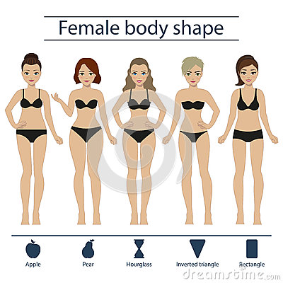 e4a58fed3cd What Is Your Body Shape  Apple