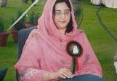 پی پی پی: تحریک سے پارلیمانی حقیقت تک!