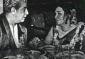 1971ء کے دن اور شہسوار راتیں …