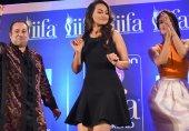 بالی وڈ ڈائری: انڈیا میں ایک بار پھر پاکستانی فنکاروں پر پابندی کا موسم
