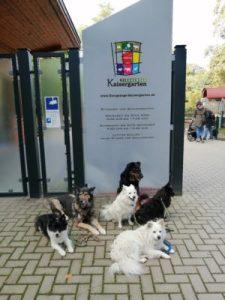 Im Tiergehege Kaisdergarten in Oberhausen