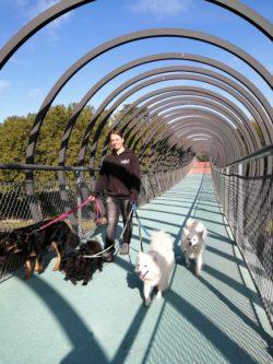Lisa auf der Brücke