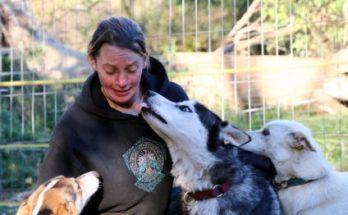 Lisa und das Huskyrudel