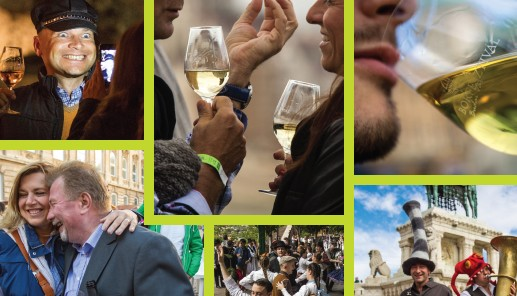 Wine festival 2015