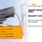 Job Vacancy - Senior Security Officer & Supervisor