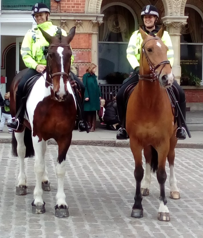Hungerford Arcade TV Police Horses Blog May 2017