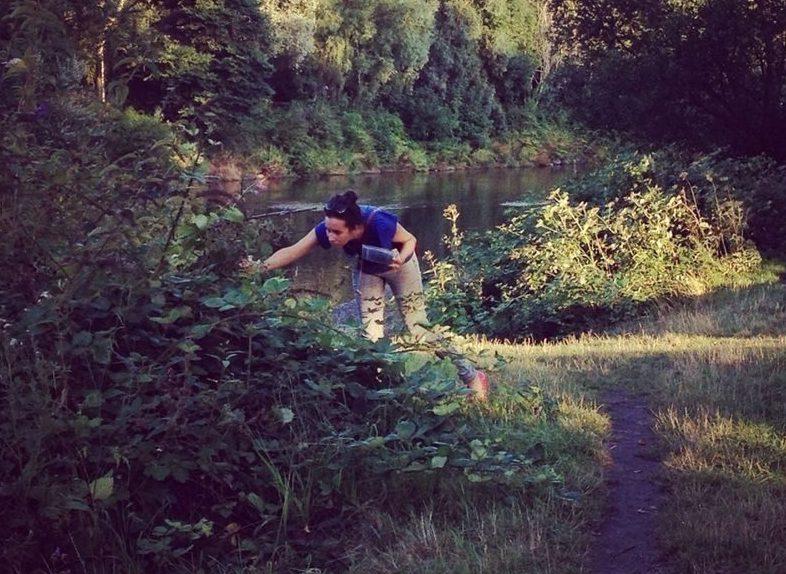 Blackberry picking, Cardiff