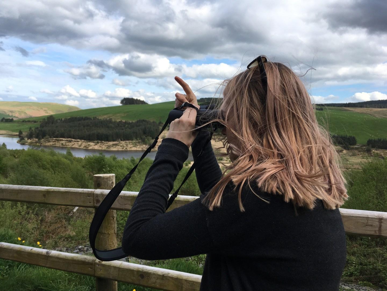 Bird spotting, mid-Wales