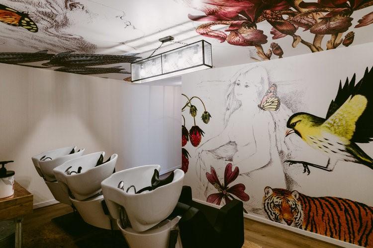 Amaryllis salon 1