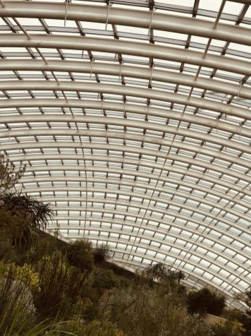 The glasshouse at National Botanic Garden