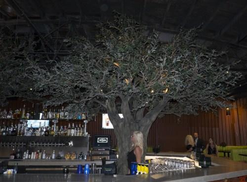Tree/bar