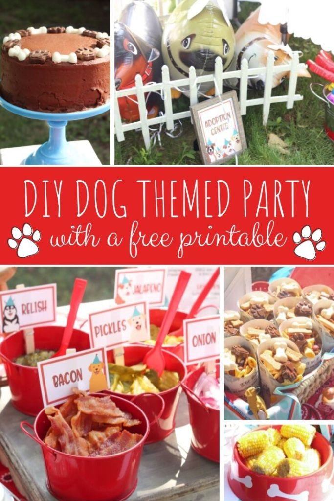 DIY Dog Themed Birthday Party Ideas | Baby Birthday Theme Ideas via Kara's Party Ideas | via Hunny I'm Home