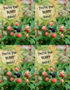 You're the berry best gift tag