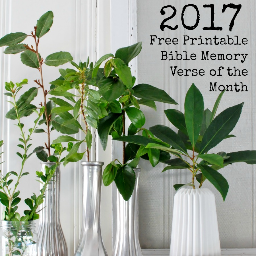 2017 Bible Memory verses of the month with a free printable from Hunt & Host