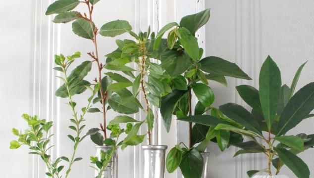 Magnolia Market Inspired Spring Style
