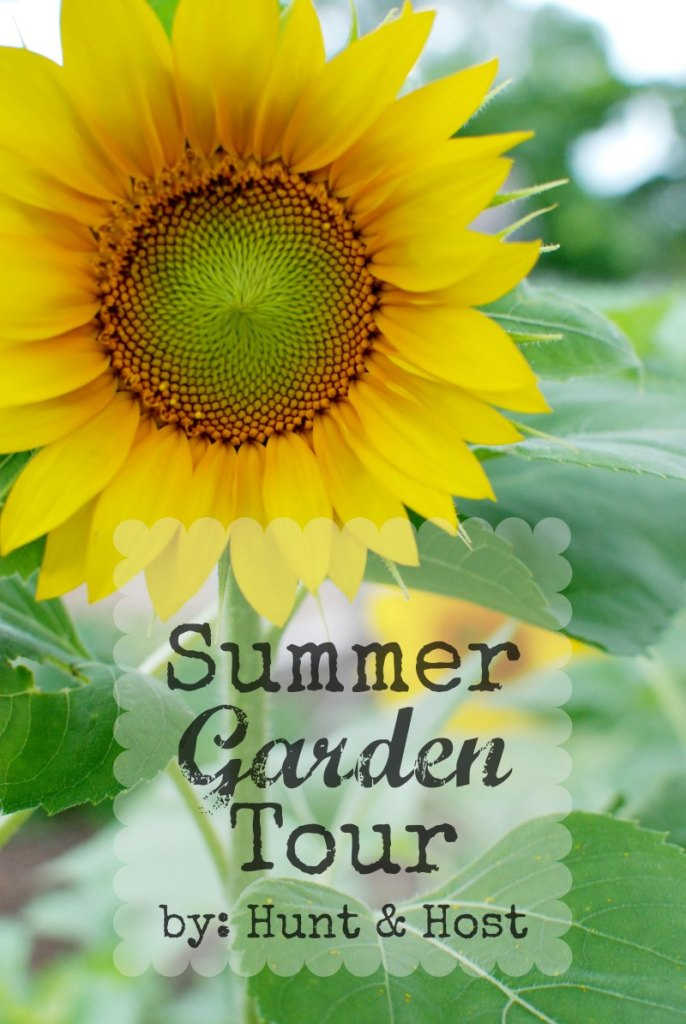 Magnolias, mushrooms, our garden, roses, sunflowers, grapes and berries, planting and hunting, lizards and baseball, swimming and swinging...all the things we love in our summer garden tour. www.huntandhost.net