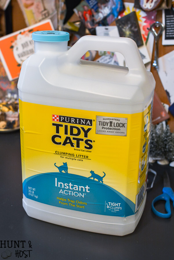 Kitty Litter Storage Bucket Hunt and Host