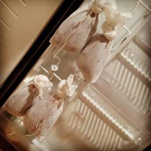 Goose Breast Prosciutto