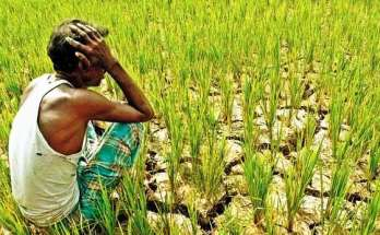 why-are-the-farmers-worried