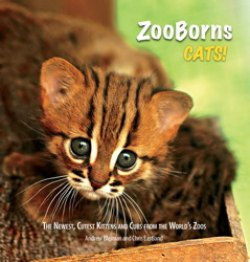 BOOK REVIEW: 'ZooBorns Cats!: The Newest, Cutest Kittens and Cubs from the World's Zoos' A Delightful Followup Book to 'ZooBorns'