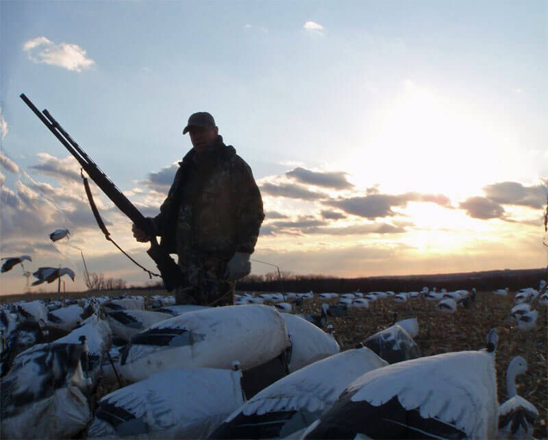 Extension tubes are legal when hunting snow geese during the spring season. This hunter might be taking it to extremes.