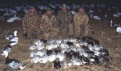 This is the first day Damian Kuzmin and I hunted over Deadly Decoys™ together. His party combined with the 4 hunters in the picture shot 46 snow geese in early March.