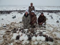 Many say you can't kill snow geese in the snow. This picture proves otherwise.