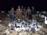 Most of our guides hunt when they are not guiding. This is an afternoon we had off so we hit the field. It was a good afternoon with 52 birds taken.