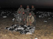 Another fine day in the snow goose decoy spread