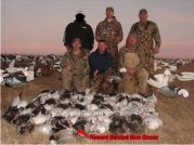 These hunters shot 69 snow geese and a double banded on a blue goose. One regular leg band and a $20 reward band.